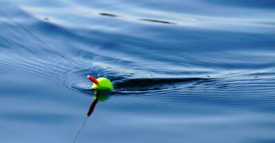 10 základných tipov pre rybárov začiatočníkov - všetko, čo by ste mali vedieť pred prvou rybačkou, 1. časť