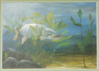 Olejomaľba originál - Štika v rastlinách