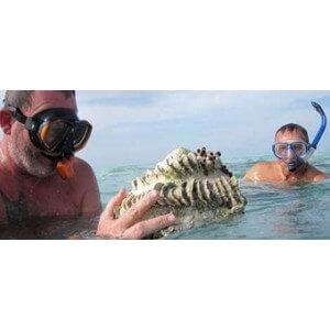 Obrázek 2 k Kniha - O rybách a rybároch