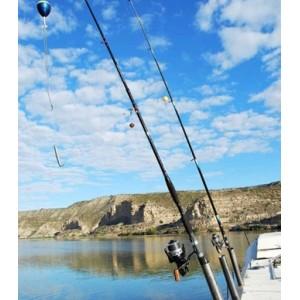 Obrázek 8 k Kniha - O rybách a rybároch