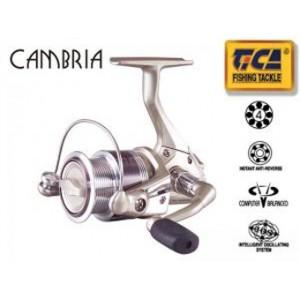 Navijak TICA Cambria LY