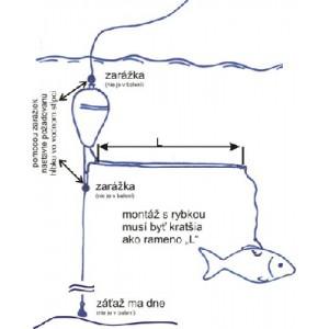 Sumcová systém Štupek podvodný