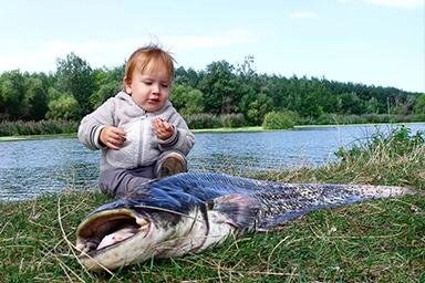 Šesť rokov stará fotka môjho malého brata s veľkou rybou.